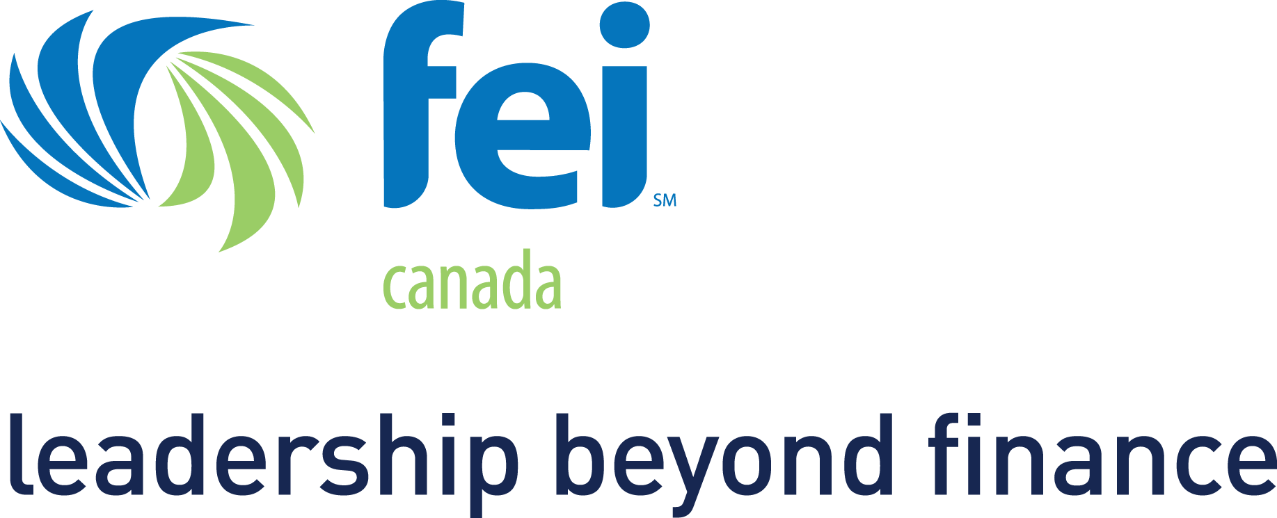 FEI_LeadershipBeyondFinance